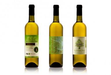 Víno z vinařství Beneš, Rulandské šedé